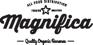img-logo-opacity
