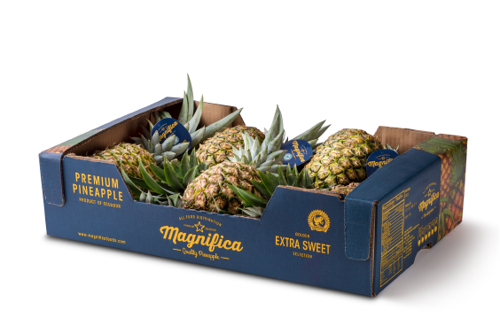 pineapples-package